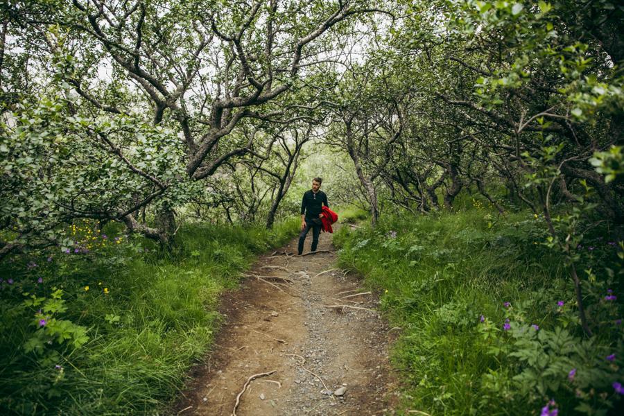 trekking svartifoss islandia