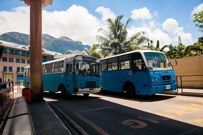 seszele informacje praktyczne autobusy