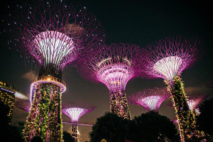 singapur zwiedzanie na własną rękę